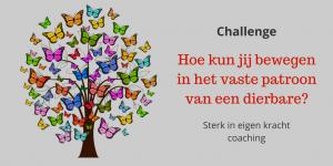 Challenge vaste patroon