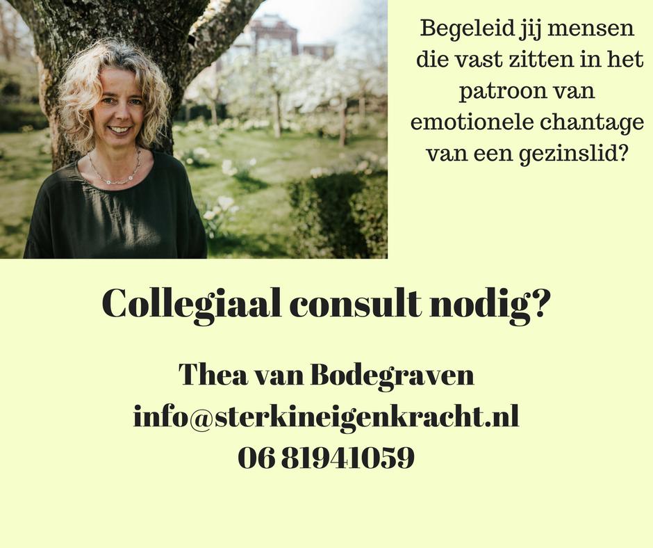 collegiaal consult